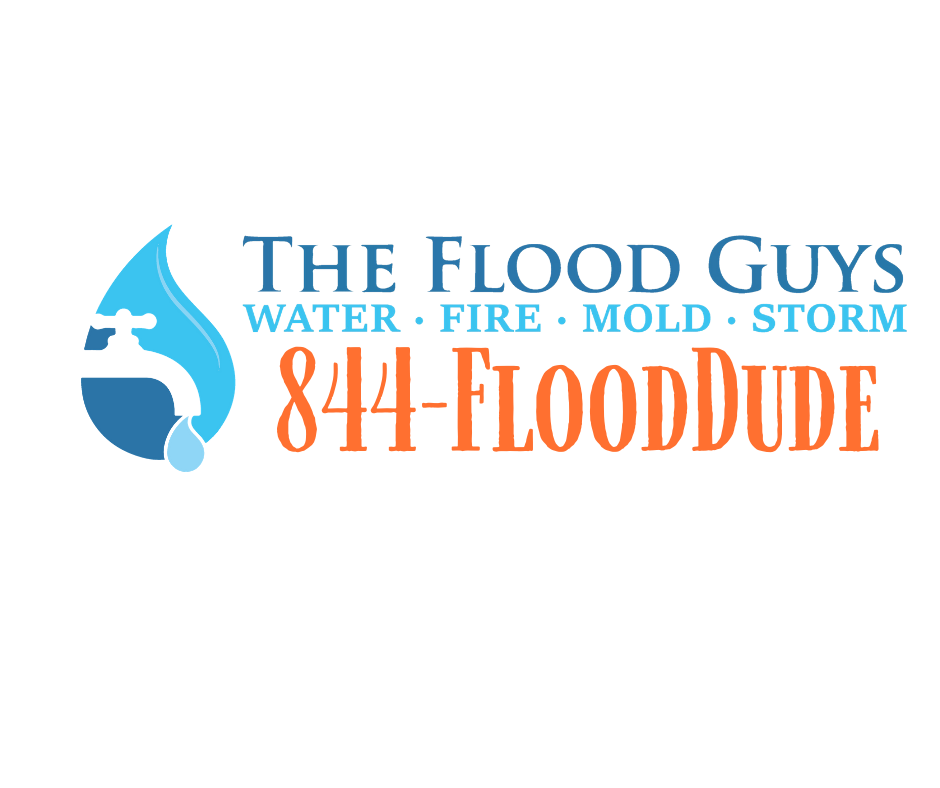 horizontal The Flood Guys logo water fire mold storm mitigation